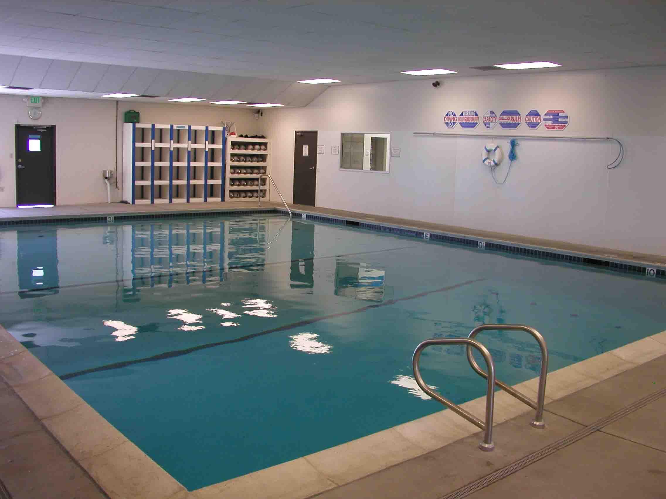 Our Indoor Pool Diver Dan 39 S