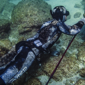 Free Diving & Spear Fishing